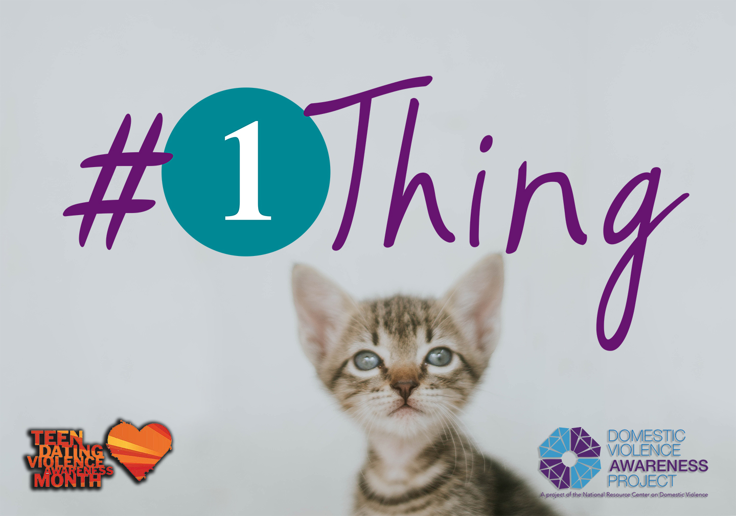 #1Thing logo imposed over image of a kitten