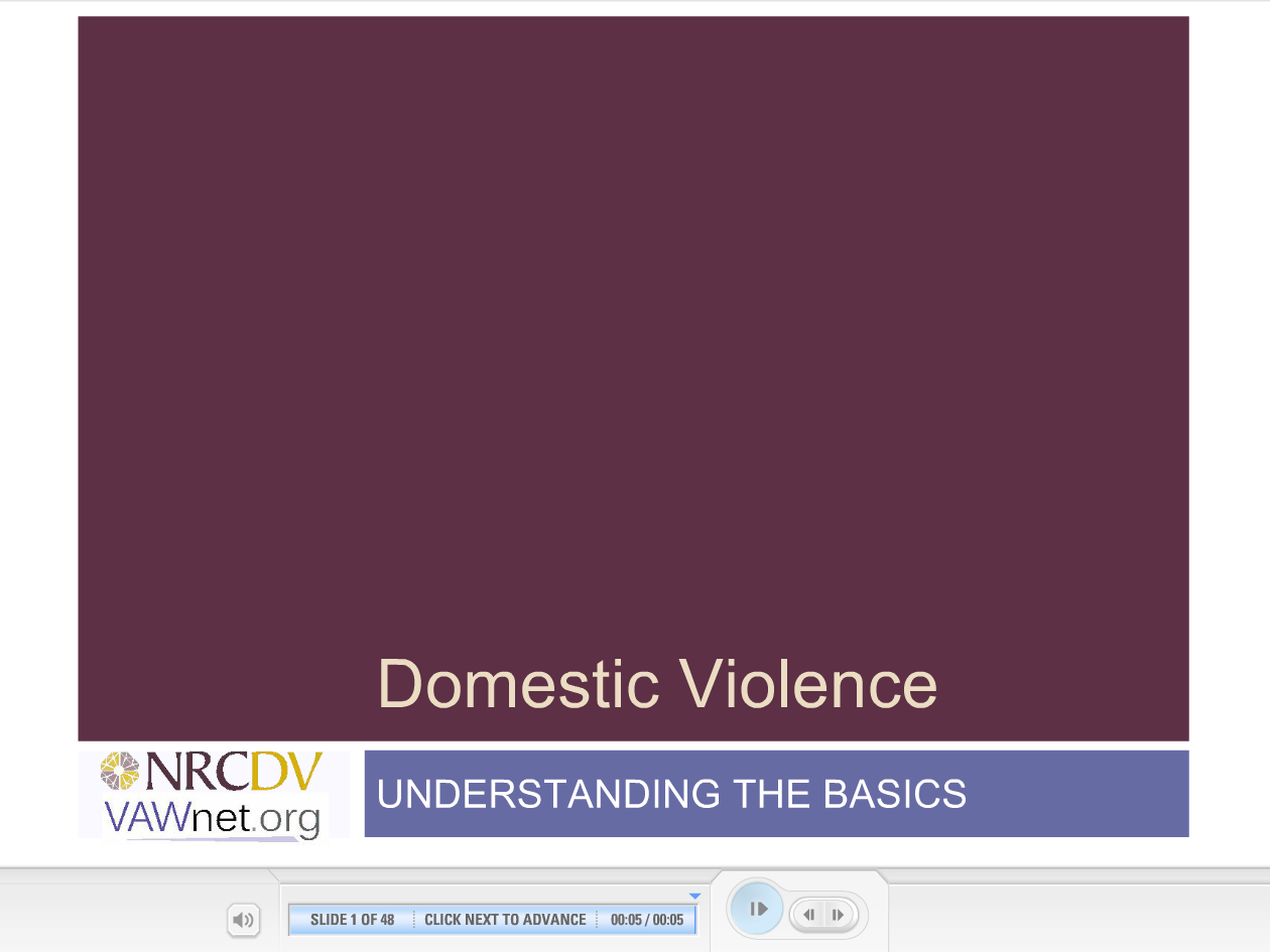 Domestic Violence understanding the basics elearning module cover slide