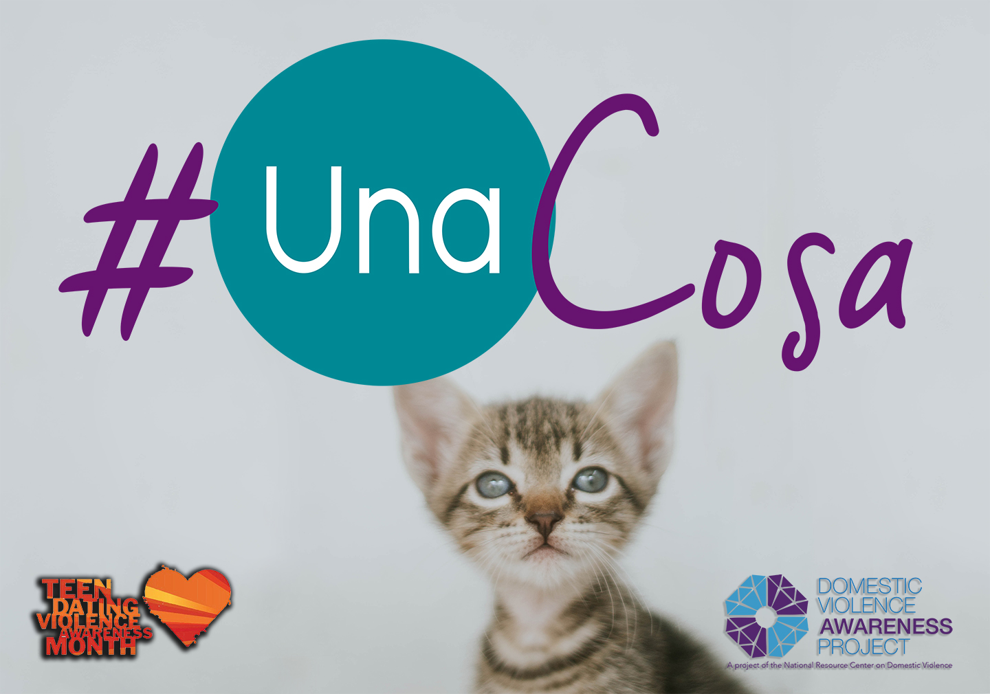 #UnaCosa logo imposed over image of a kitten