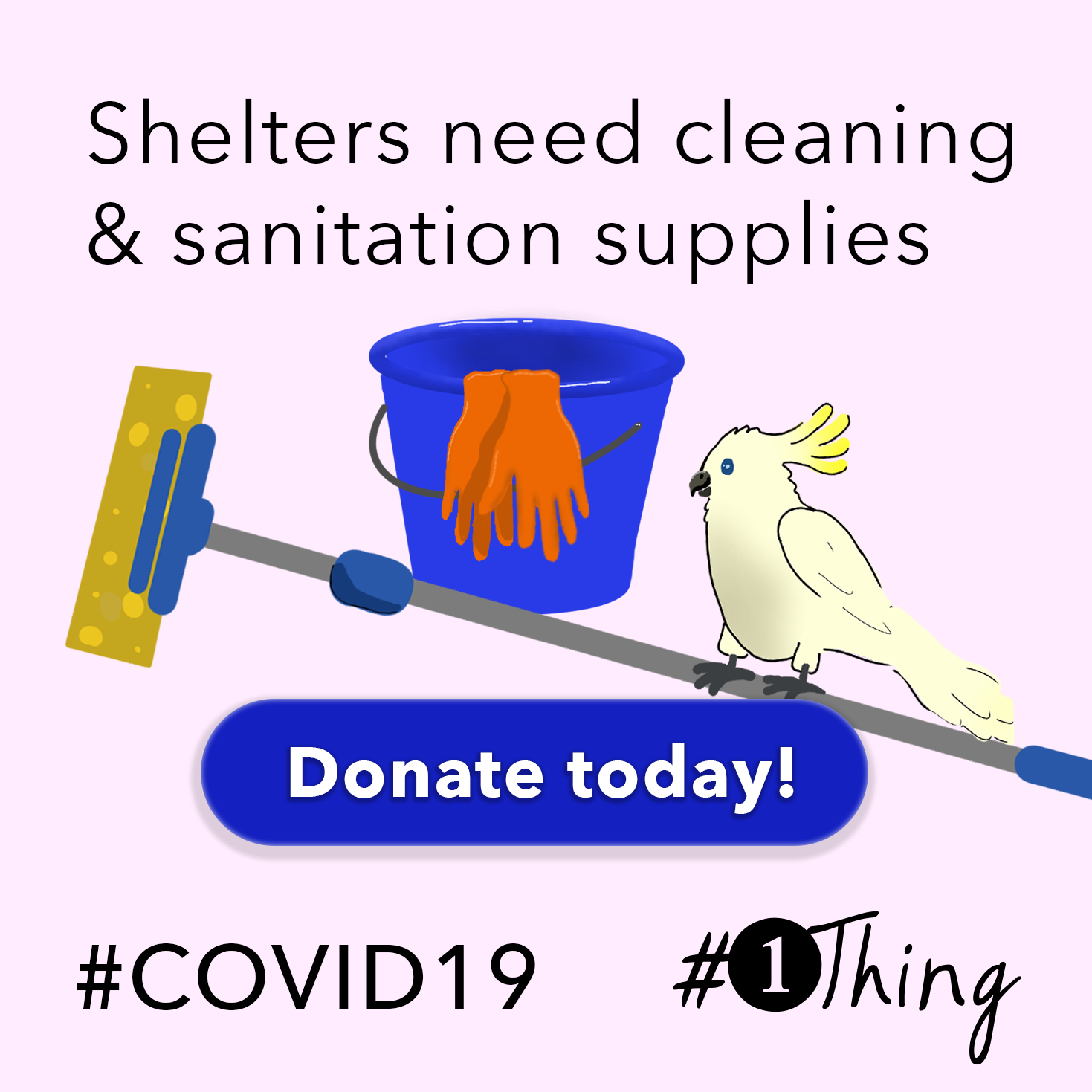Shelters need cleaning & sanitation supplies